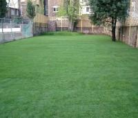 Aménagement d'un jardin : Après