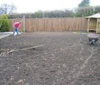 creation pelouse en rouleau