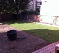 pose de pelouse en rouleau
