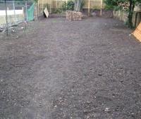 Aménagement d'un jardin : Avant