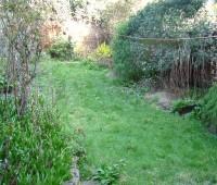 remise en état de jardin : Avant