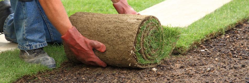 faire un gazon ou une pelouse