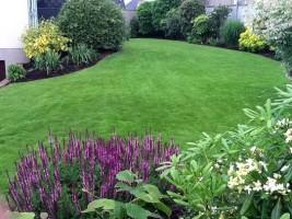 un jardin entretenu